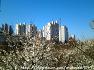 동탄2신도시 치동천 트레킹(O3)