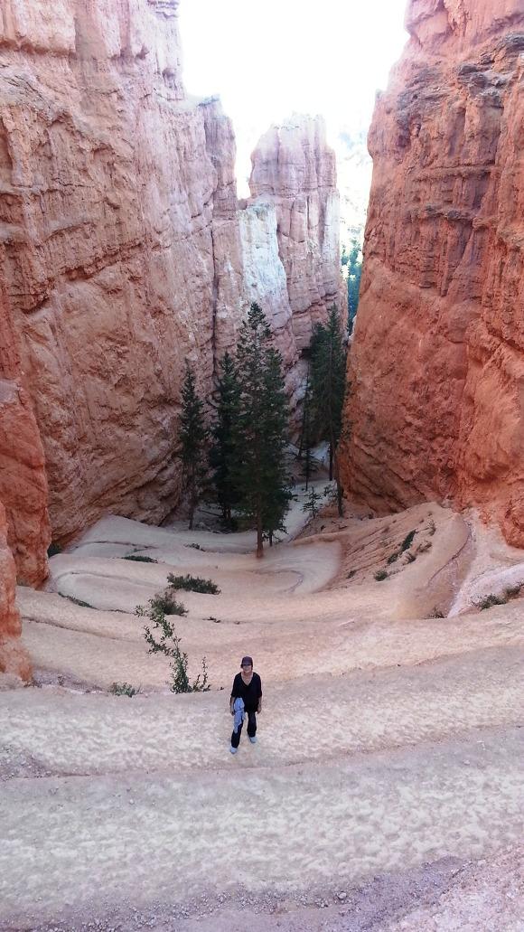 서부 그랜드써클 - (8) 브라이스 캐년 Bryce Canyon