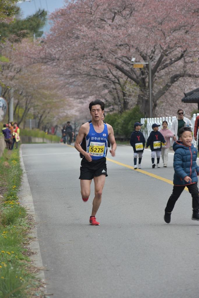 2019 영천댐 벚꽃마라톤대회 주로(10:15 ~ 10:54)
