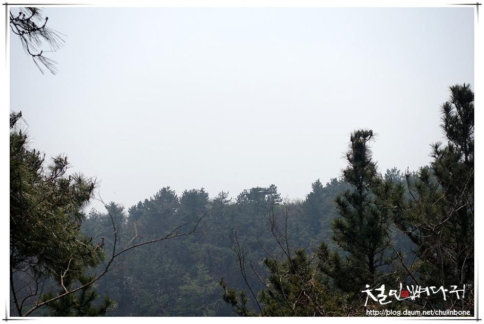 [▶] 느지리오름 2.03km(드론촬영.MAVIC2PRO.제주도)